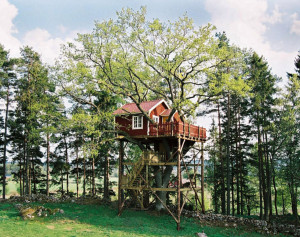 301013_Hotel-Andrum-tree-house