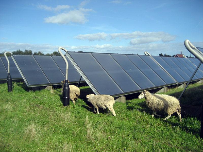 160114_Marstal_solar_plant_Aero_Denmark