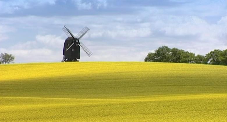 Windmill in Skane