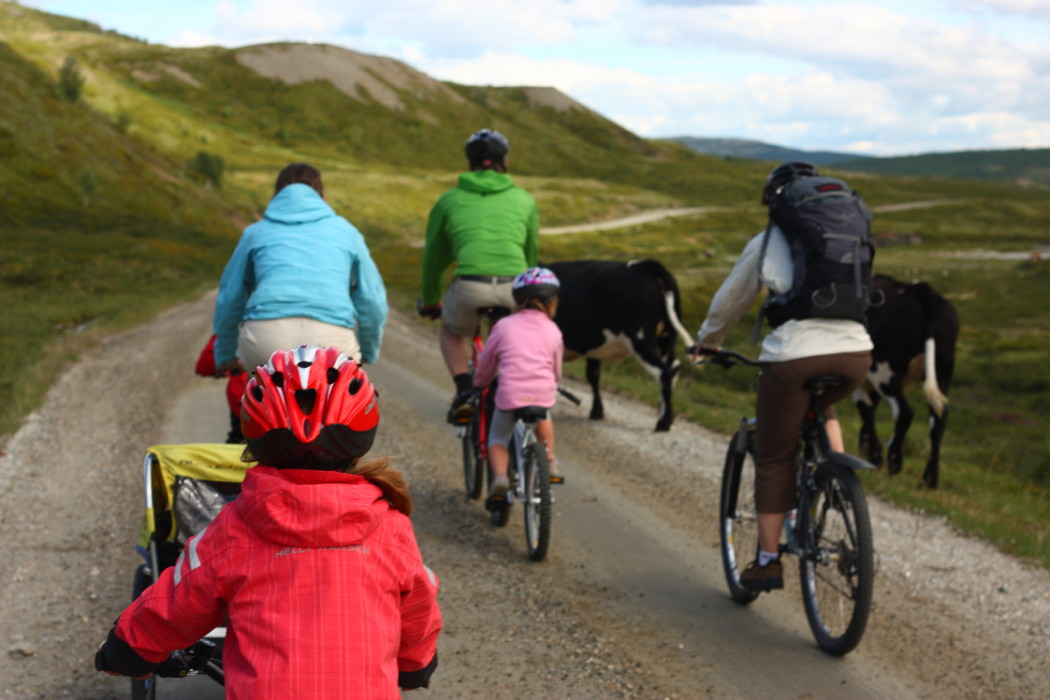 040614_Biking_in_Norwegian_Mountains3_Photo_Oivind_Wold