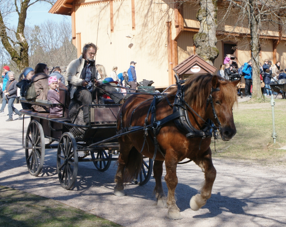 Activities at Bogstad Manor