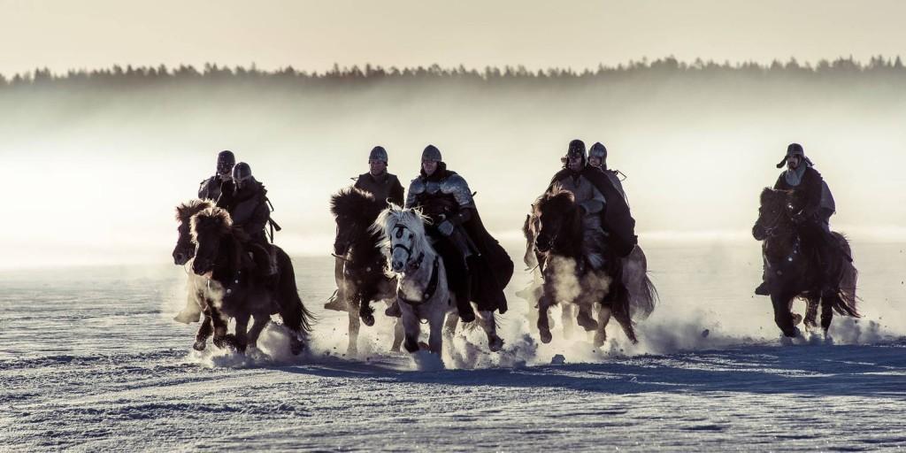 030316-birch-legs-on-horse