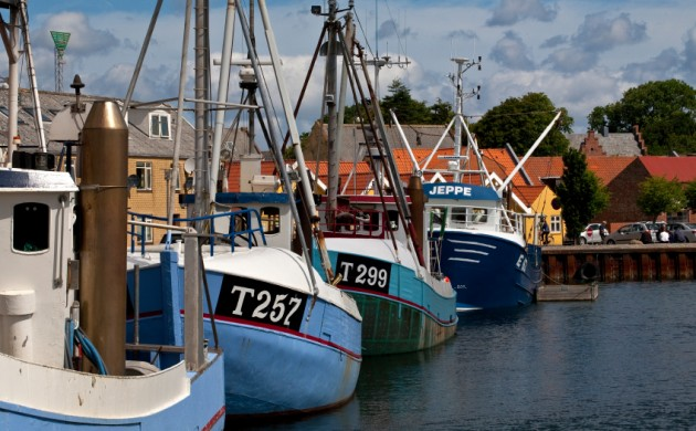 Danish fishing fleet