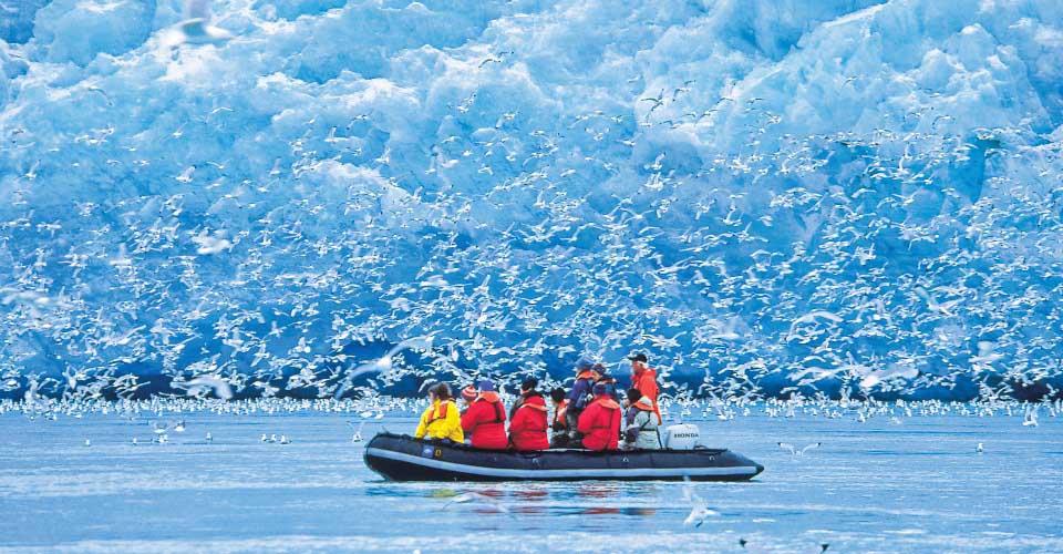 Zodiac among Kittywakes swarm. Monaco Glaciers, Svalbard