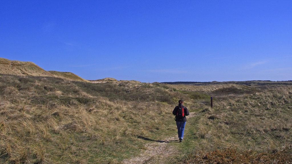 Hiking in the dunes of Skagen, Denmark
