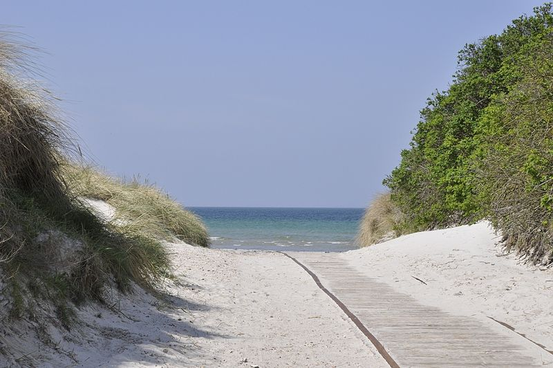 250616-gudmindrup-beach-denmark
