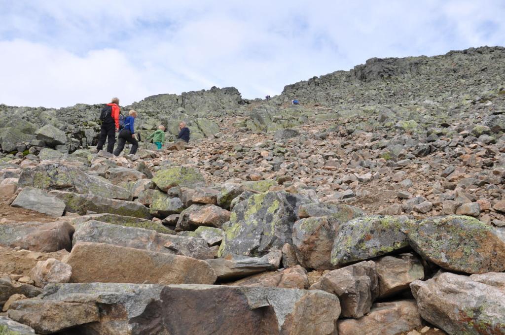 Sherpa stairway at Hallingskarvet