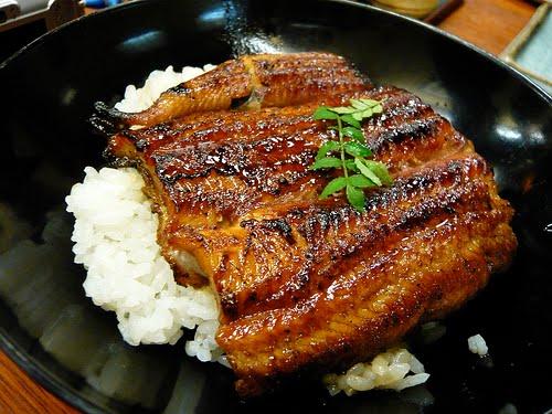 Grilled eel